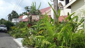 Ivan Hoe's Guest House