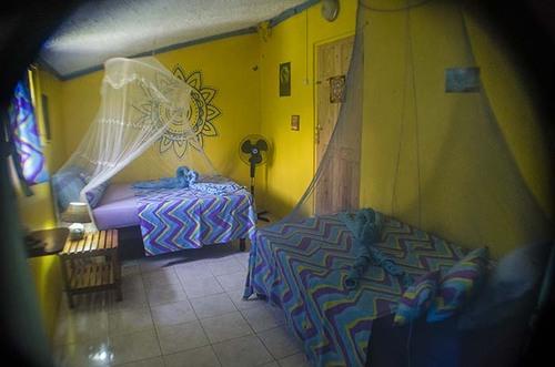 Sunbeam Room - Go Natural Jamaica