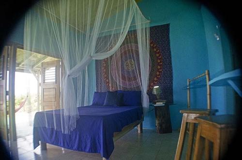 Seafront Villa - Go Natural Jamaica